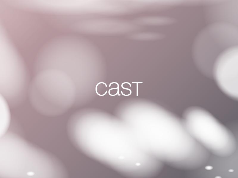 Management Consultancy    Cast Professionals    View Project