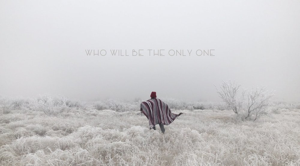 coverDanaFalconberry_WhoWillBeTheOnlyOne.jpeg