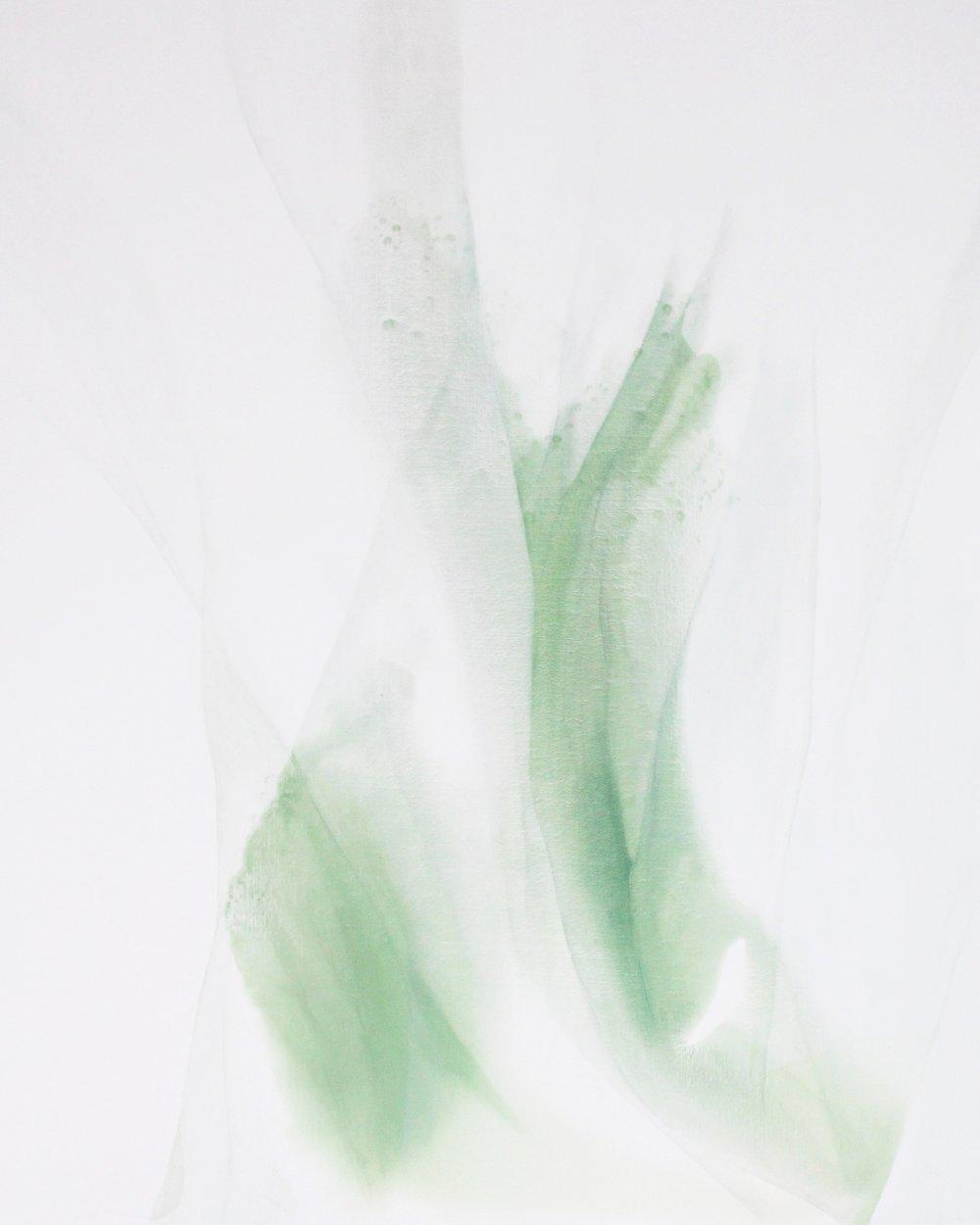 ephemeral_05  oil on canvas  80 X 100 cm  2017