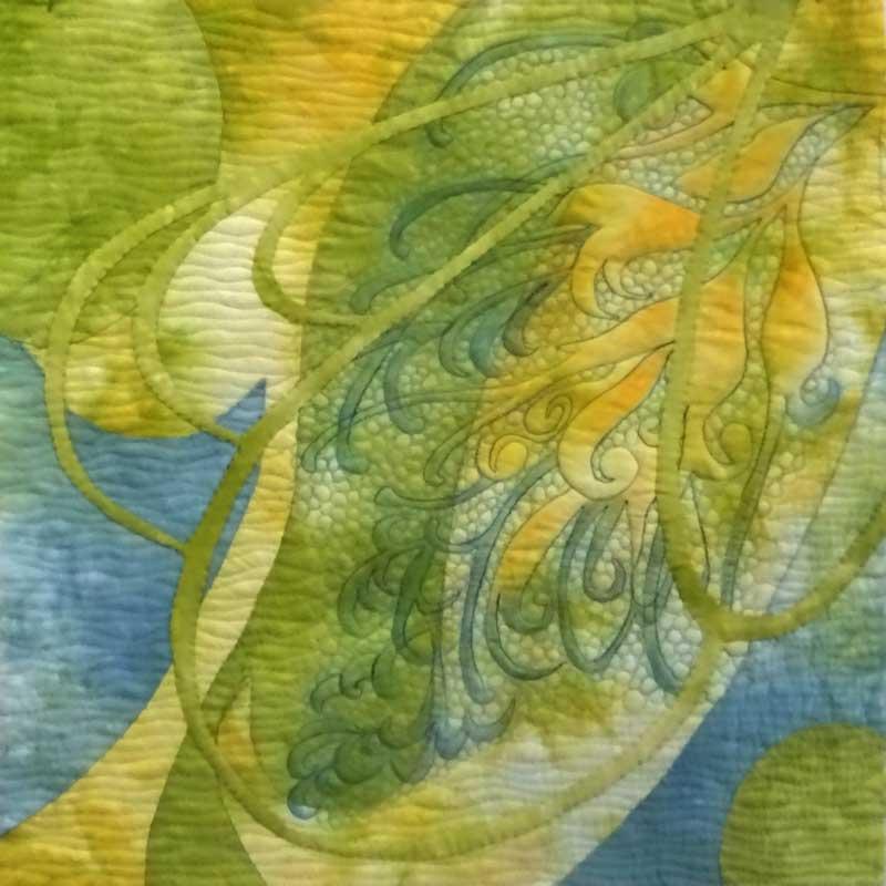 'Grevillea Green & Gold'