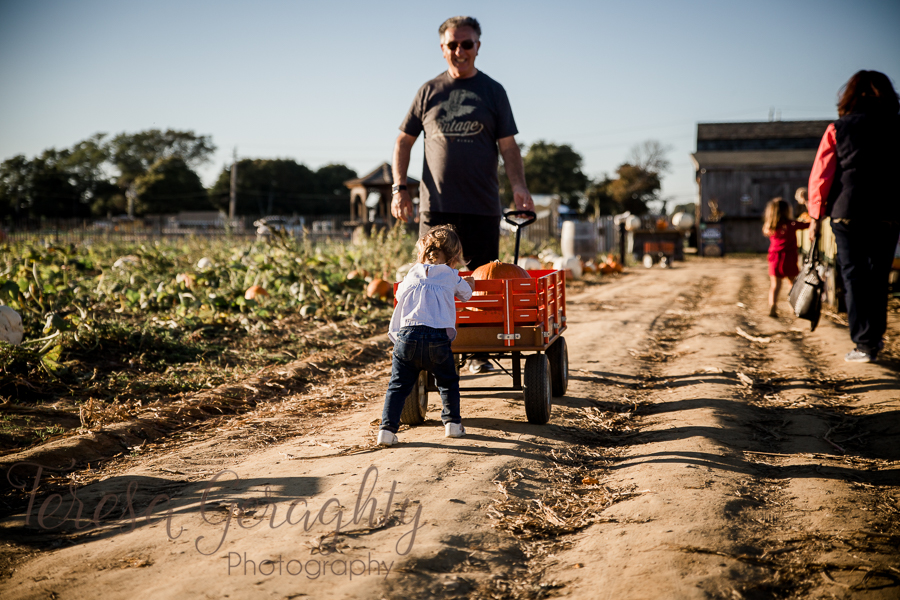 Harbes Family Farm Photography