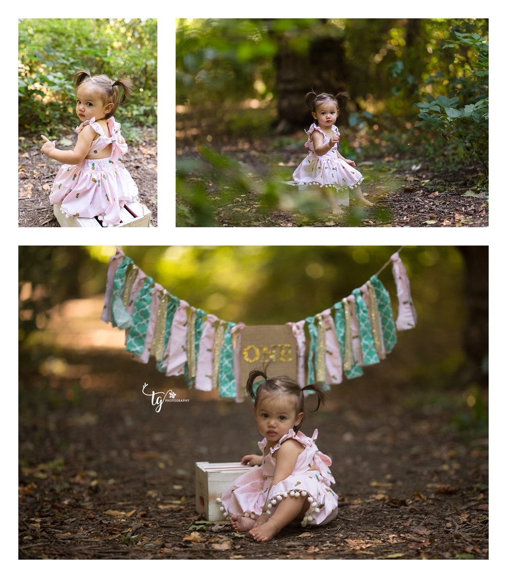 first birthday photographer