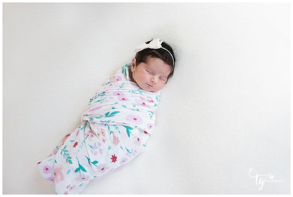 classic newborn photography