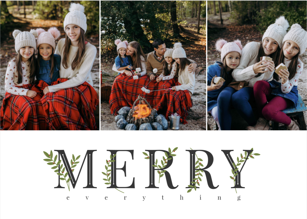 family photographer for holiday photos