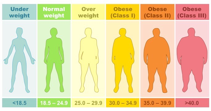 bmi-categories_med.jpeg