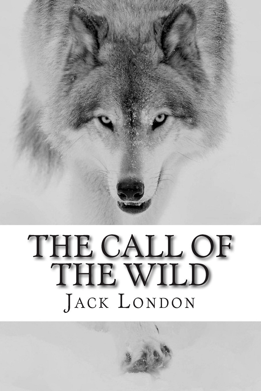 The Call of the Wild by Jack London.jpg