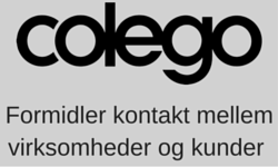 Digital_rådgivning_marketing_colego