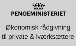 Digital rådgiver og AdWords-konsulent for Pengeministeriet