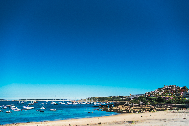 isles-of-scilly-229.jpg
