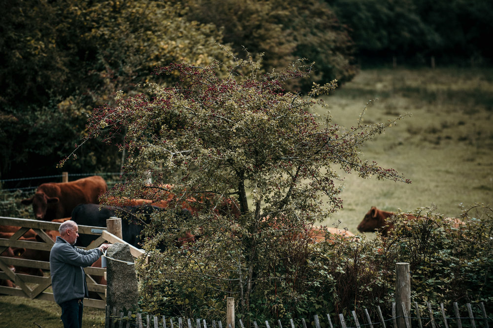 nancarrow-farm-wedding-photographer-8.jpg