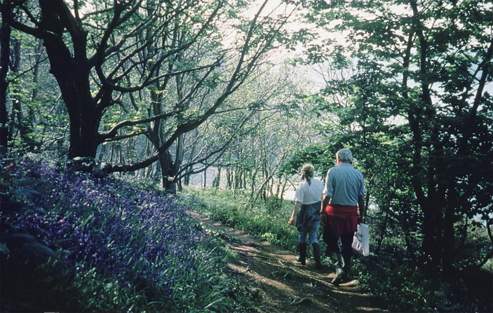 enjoy one of the many beautiful walks
