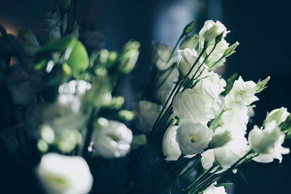 A&J fleur.jpg