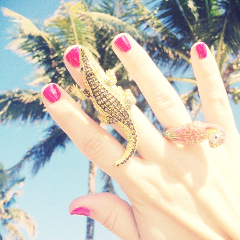 noir alligator ring and juicy couture parrot ring.