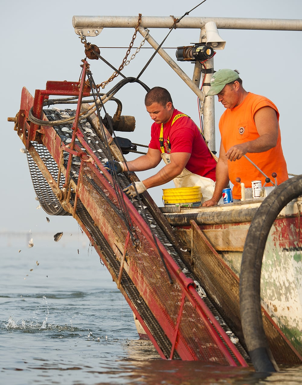 Chesapeake Bay Clamming - Market Watch  -   © Jay Fleming   06.jpg