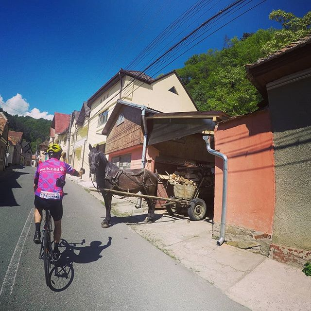 Caption this :) Photo taken in Romania during a bespoke road cycling tour. . . . . #slovenia #croatia #romania #cycling #roadcycling #roadporn #martinadventures #freedometoexplore #outsideisfree #alldamnday #balkans #adventure #travel #cycling #roadbike #cyclist #bikestagram #cyclinglife #stravacycling #instacycling #rideyourbike #ilovemybike #cyclists #lovecycling #instacycle #cyclinglove #instabicycle #cyclistlife