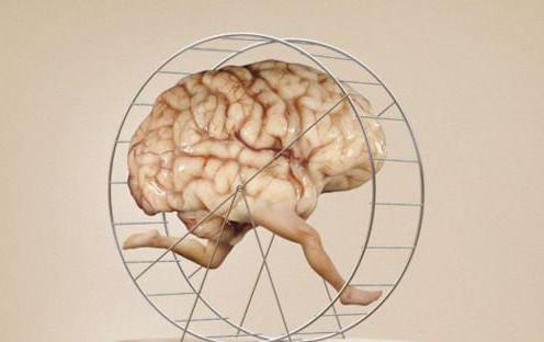Contrairement au ventre, un cerveau qui fait de l'exercice, c'est un cerveau qui grossit.