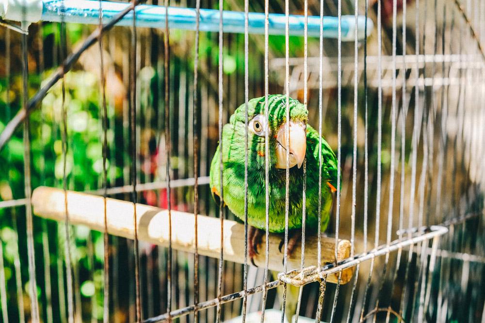 Kuba-0037.jpg