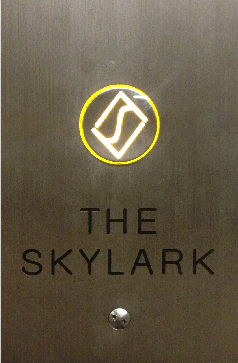 sandy-ley-the-skylark-event-space-cocktails-branding-nyc