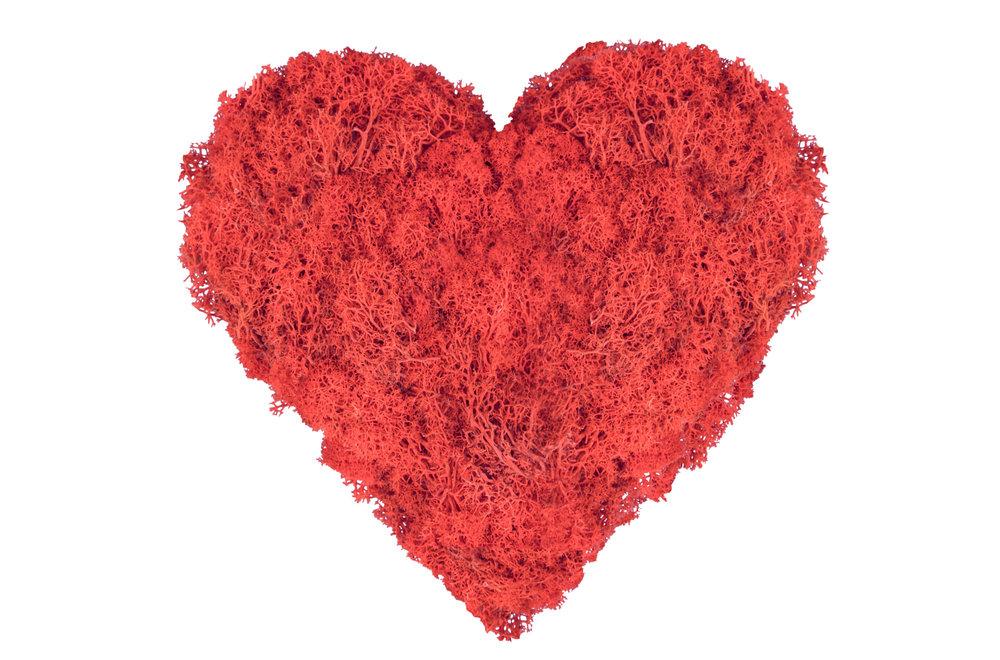 Moss-Art-for-Valentines.jpg