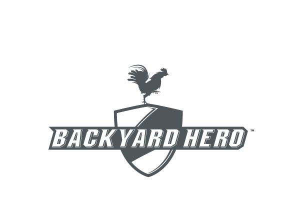 Backyard is a brand we created for the Sports Authority, reinventing backyard games with a 4 season, 200 product offer.