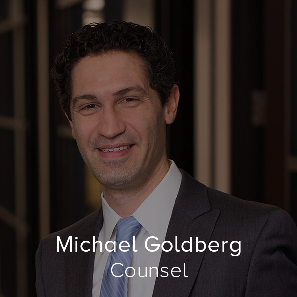 Michael Goldberg - Counsel.jpg