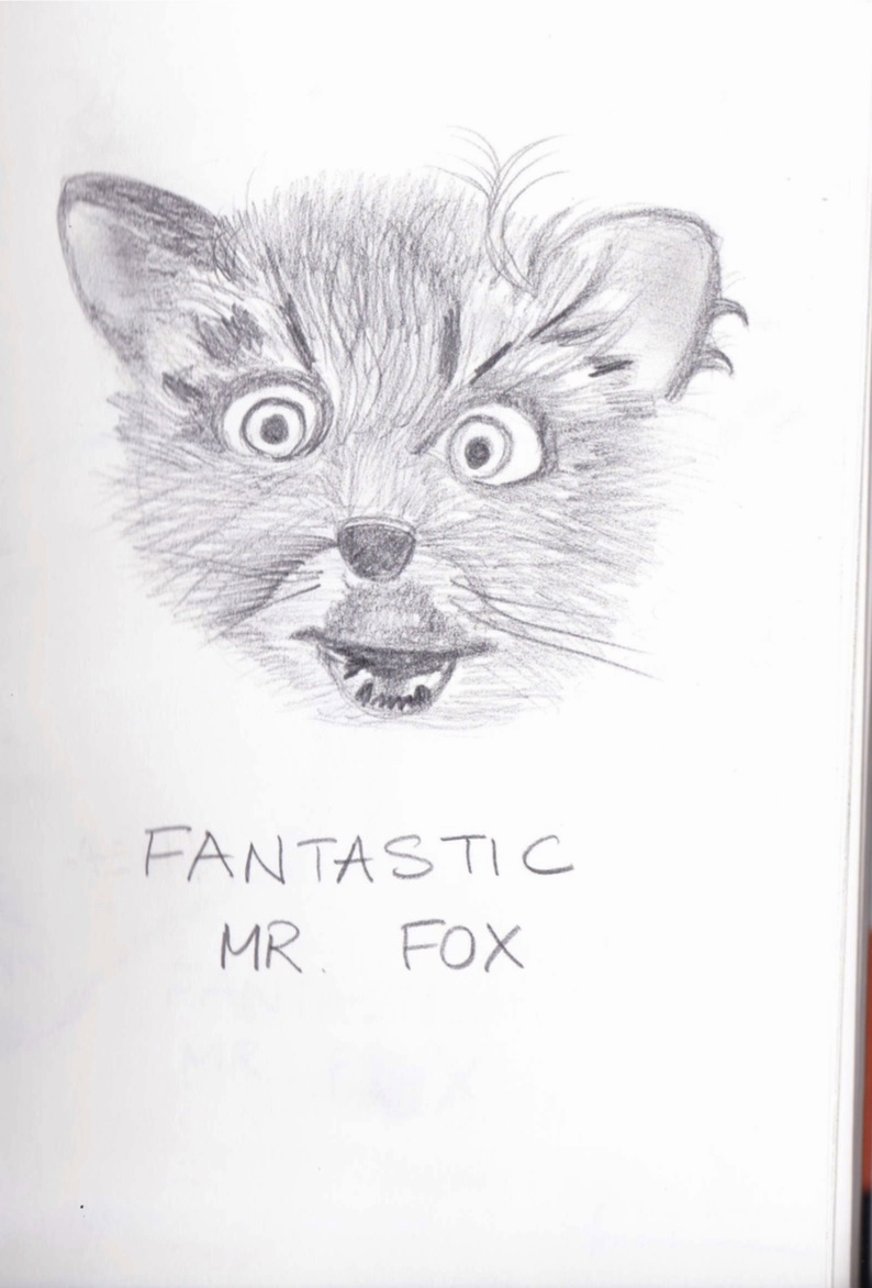 Fantastic Mr Fox sketches.jpg