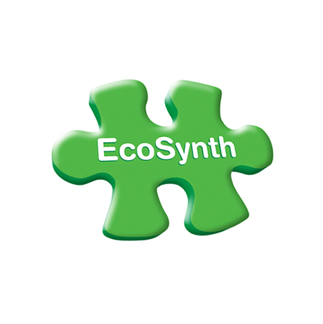 Ecosynth.png