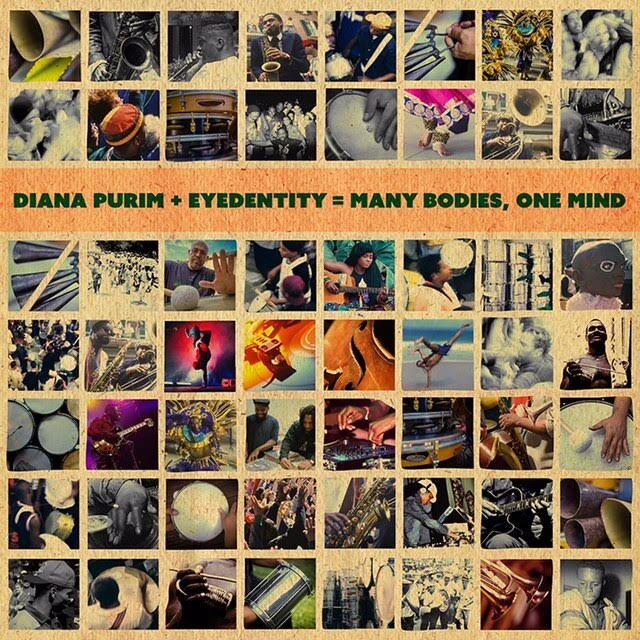ManyBodiesOneMind-CoverArt_Diana Purim & Eyedentity.jpeg