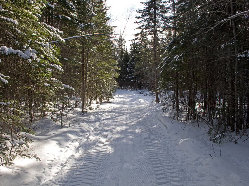 A section of the sleigh ride loop with a pretty good surface.