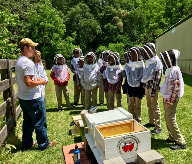 LASOAR Creates New Program to Educate Youth about Beekeeping - FOR IMMEDIATE RELEASE 4/12/2018  Read Press Release HERE