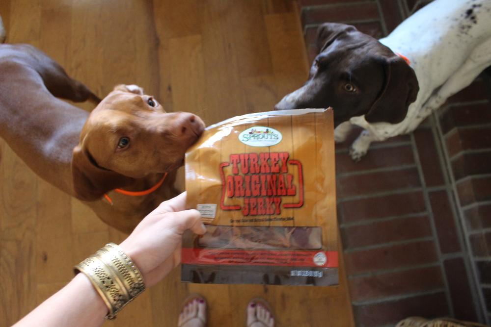 Wrigley & Scout love jerky too!
