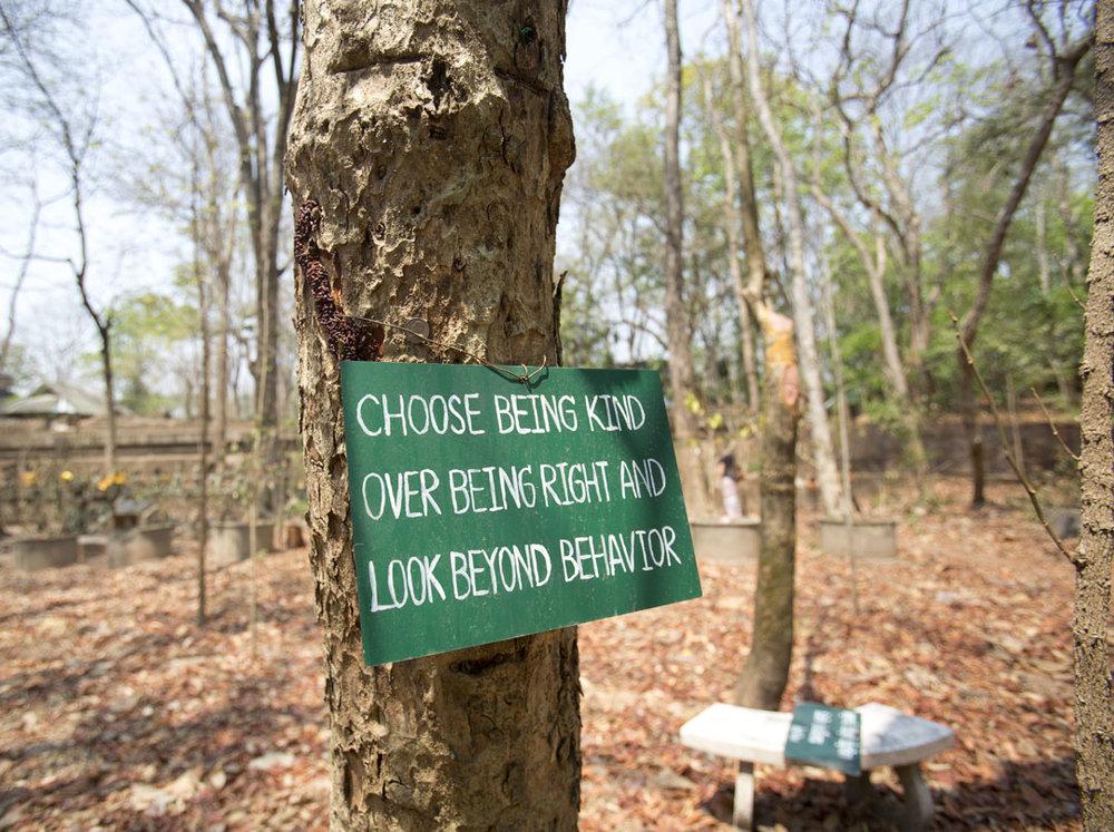 Forest_Sign.jpg