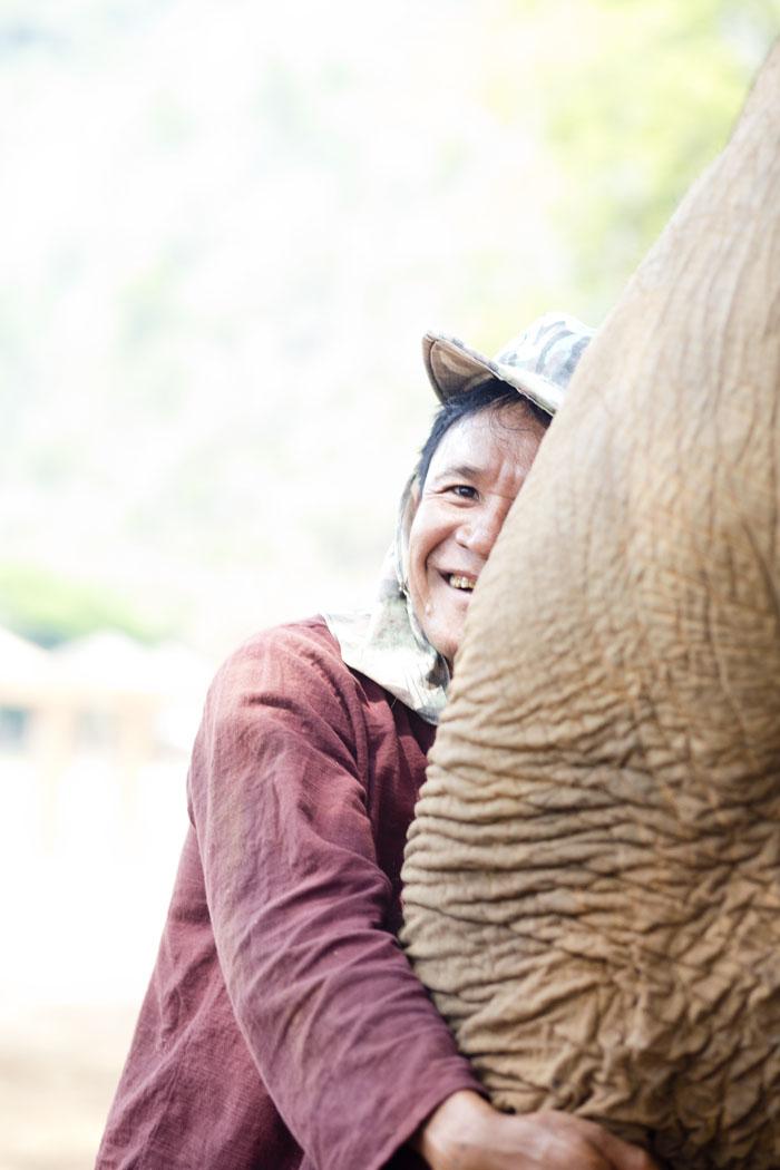 Elephant_Nature_Park_2.jpg