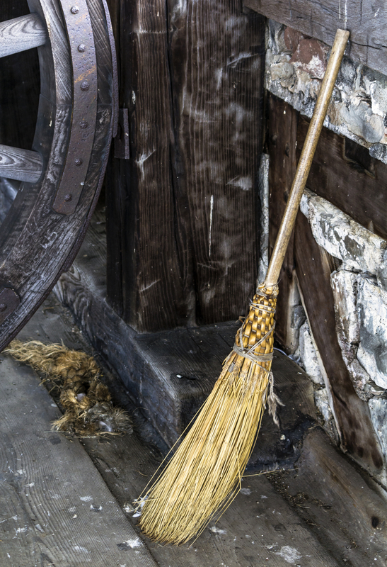 witches-broom-14974800.jpg