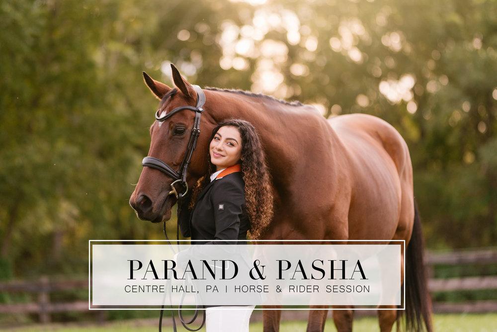 parand_pasha_header.jpg