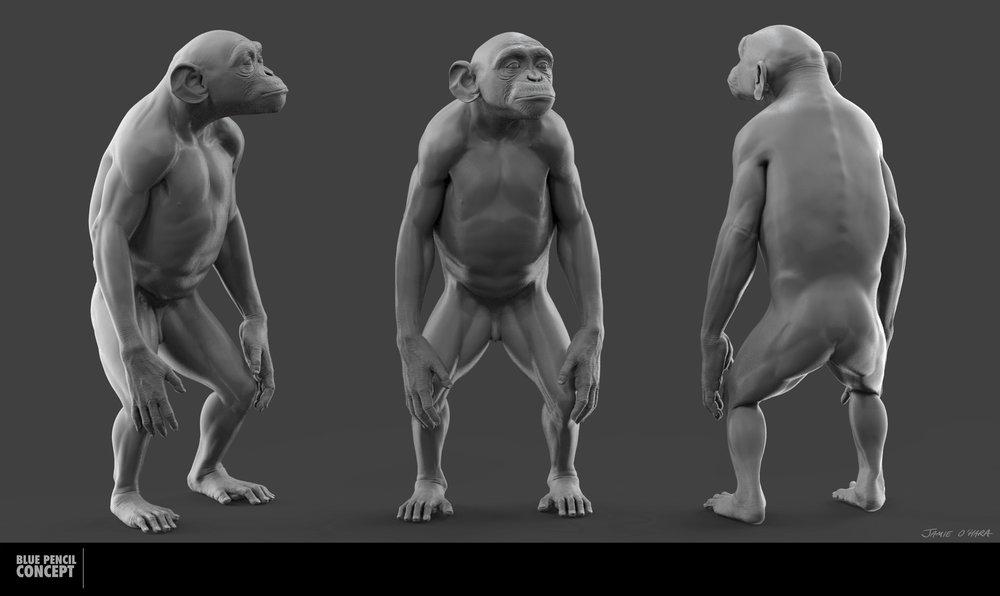 chimp_001.jpg
