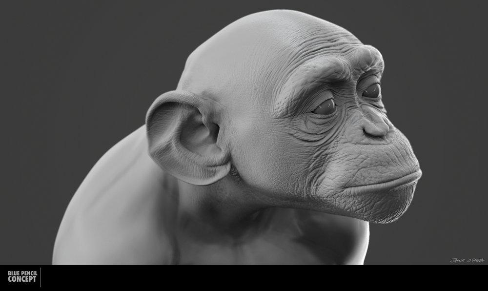 chimp_002.jpg