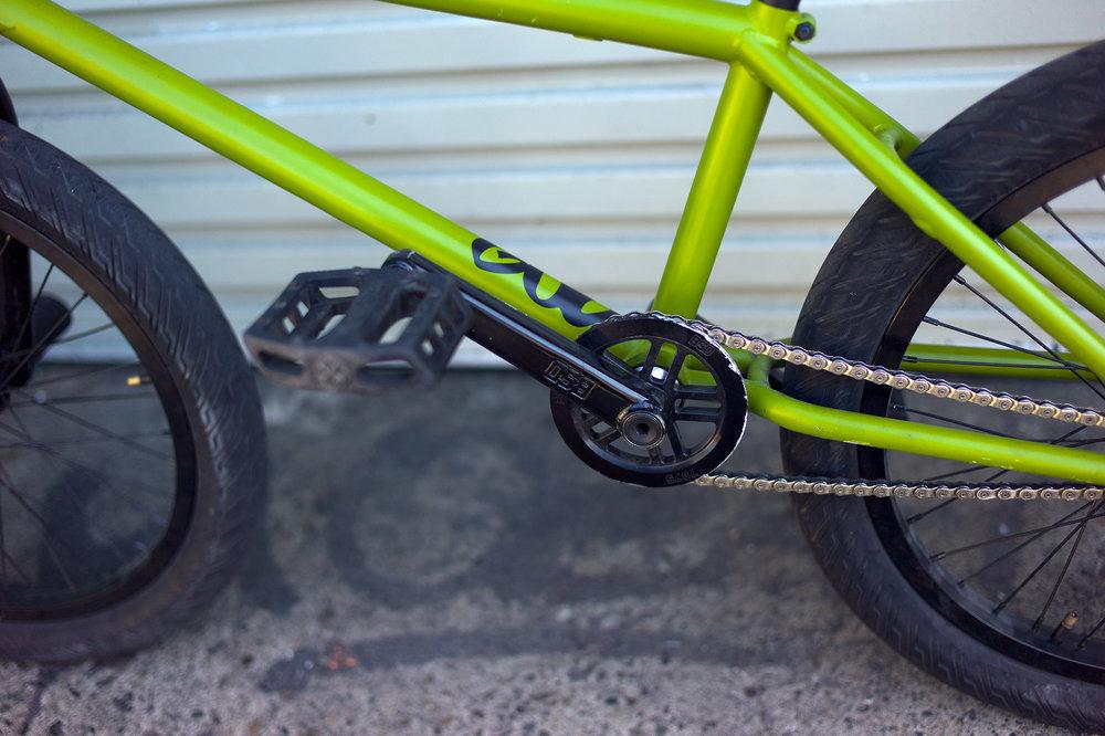 teddy_bikecheck_3.jpg
