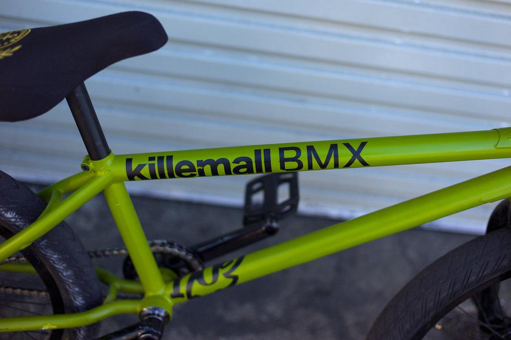 teddy_bikecheck_4.jpg