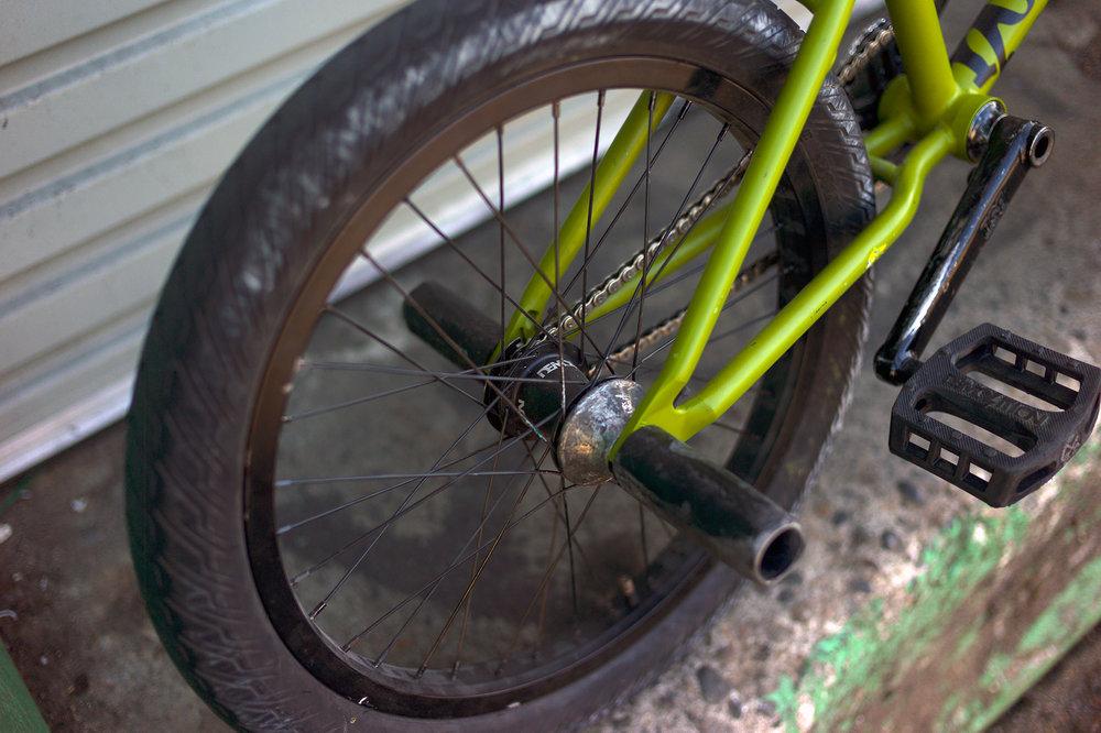 teddy_bikecheck_5.jpg