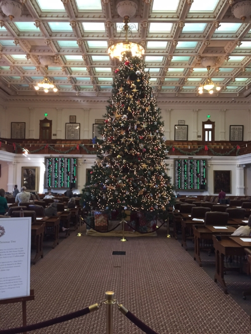 Texas State Capitol Custom Installation