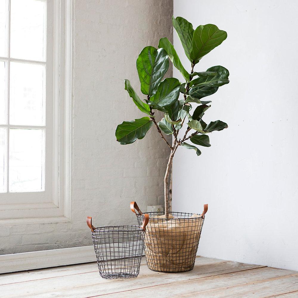 Terrain Leather Handle Iron Basket
