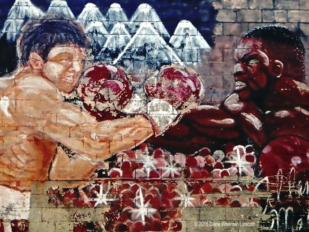 """Rosemary District Canvas: The boxing match"""