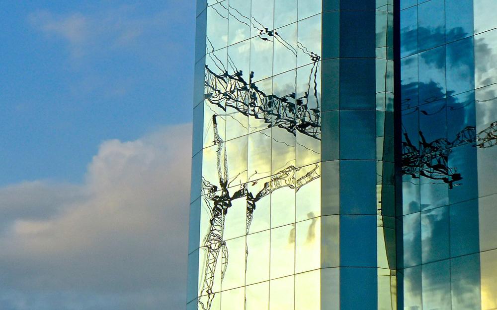 """""""Cranes Over Sarasota: PreVue"""""""