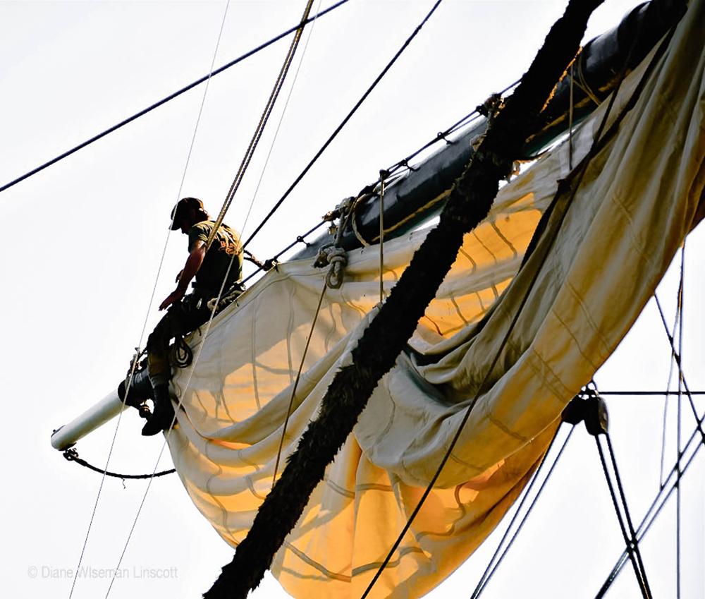 """The Bounty:Sun-filled sail"""""""
