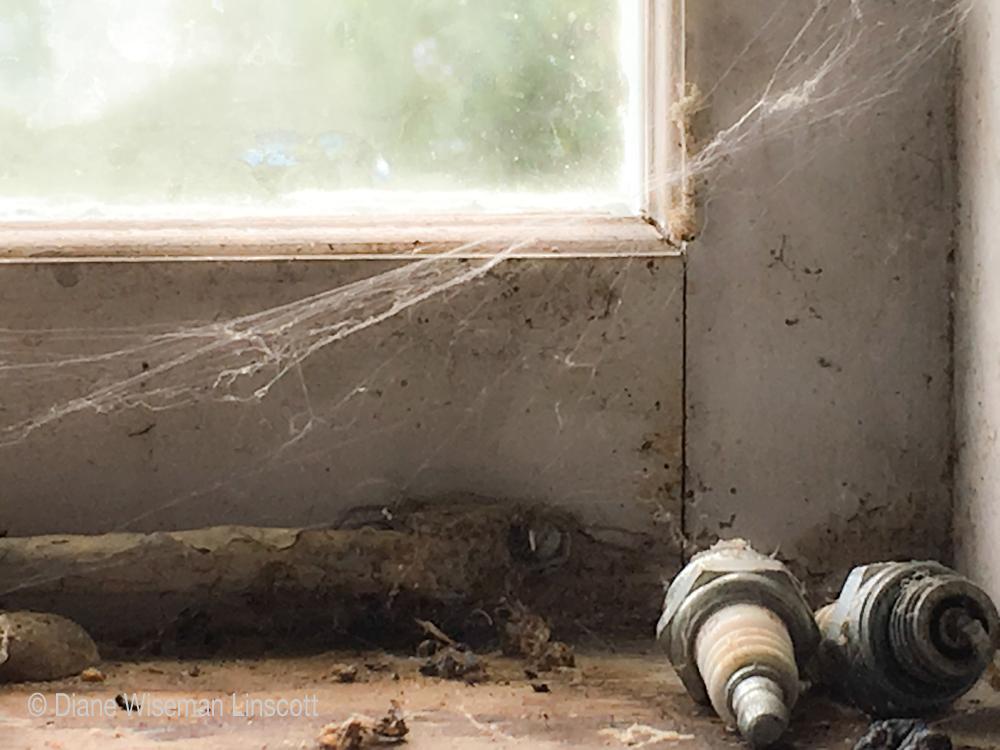 """""""Studio Series: Spark Plugs and Cobwebs"""""""