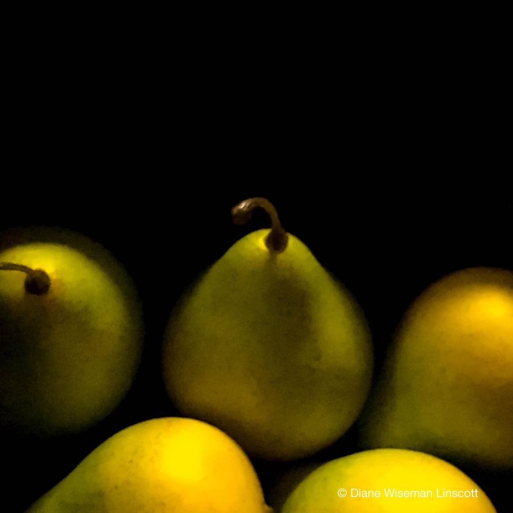 """Pears in Morning Light"""