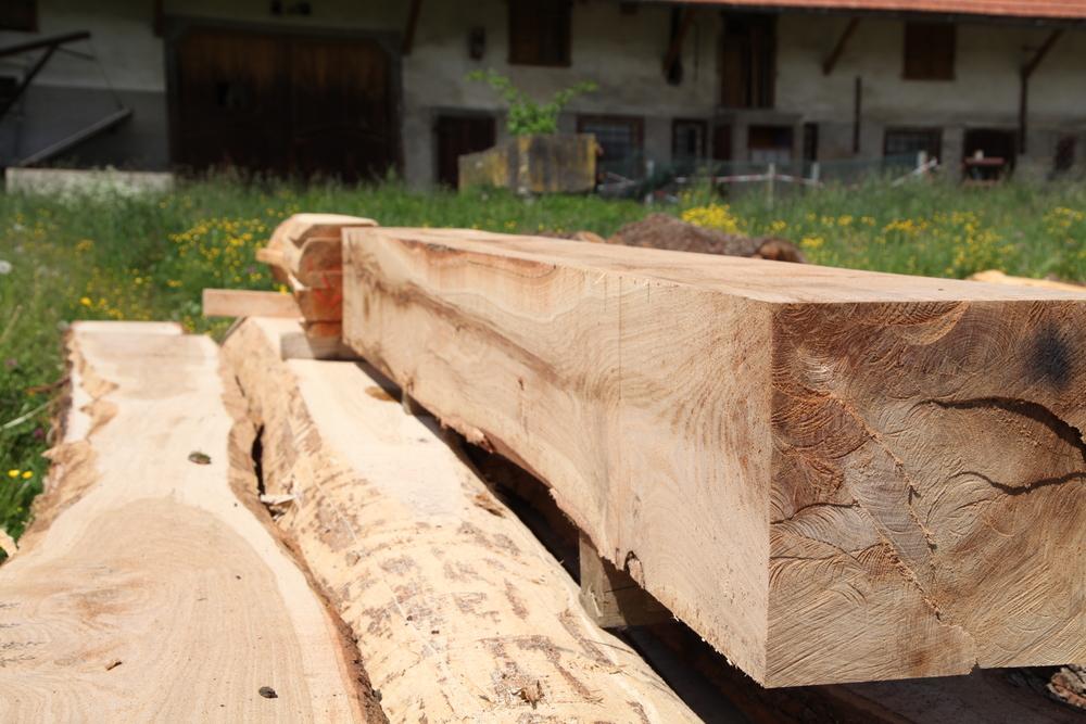 Frisch gesägtes Eichenholz
