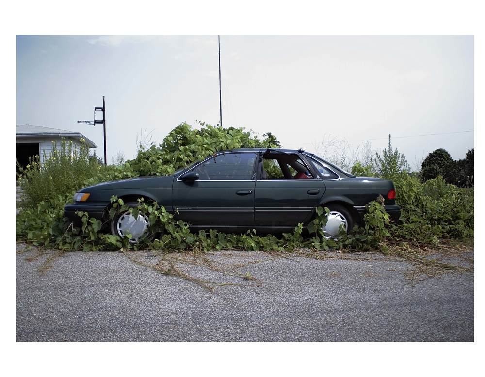 "Green Ford, 2007 | From ""Iroquoia"", 2007"