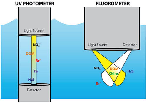 Optical sensors make measurements based on the interactions of light from a sensor with particles or dissolved constituents in water. Certain types of dissolved constituents, such as nitrate and organic matter (DOM), convert absorbed light into other forms of energy, including the re-release of energy at longer wavelengths (e.g., fluorescence) by certain humic substances.  Via USGS